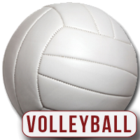 volleyball_icon